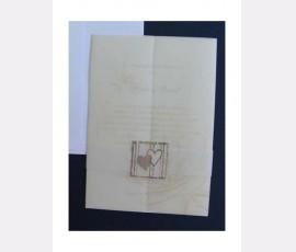 Promotie Invitatie de nunta eleganta cod 60277V
